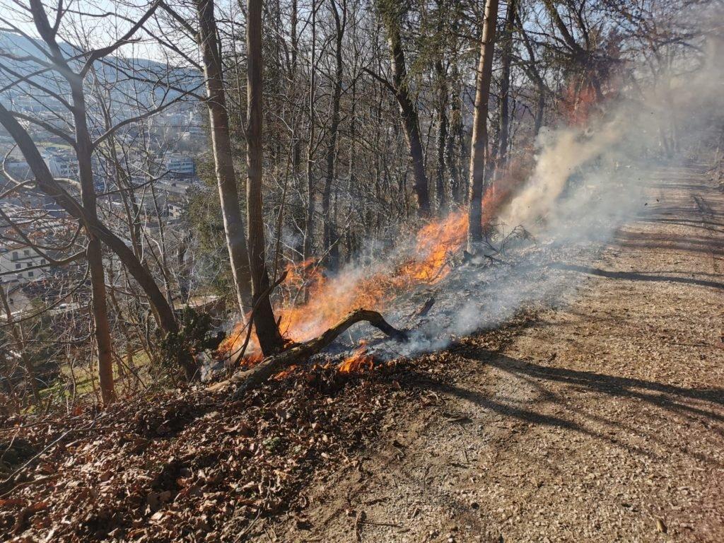 Waldbrand Quelle Füürwehr Wettige.jpg